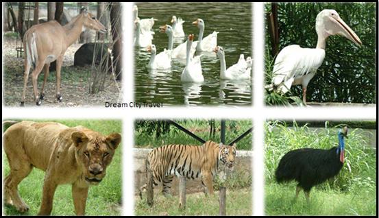 Sarthana Nature Park Surat