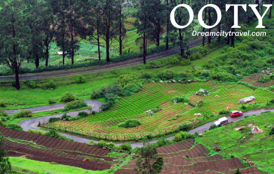 Ooty - Best places to visit in india